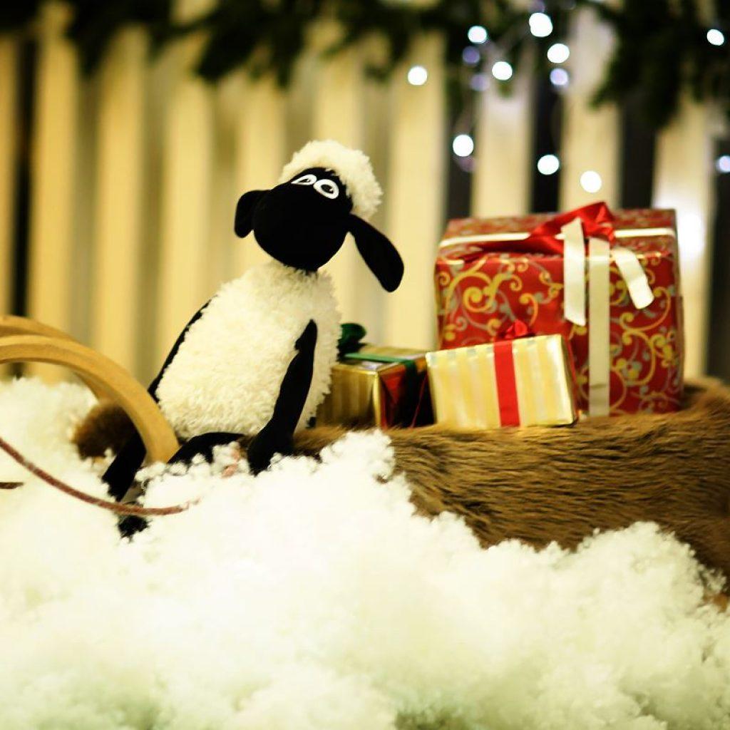 Kalėdos Aviuko namuose. Fotosesija