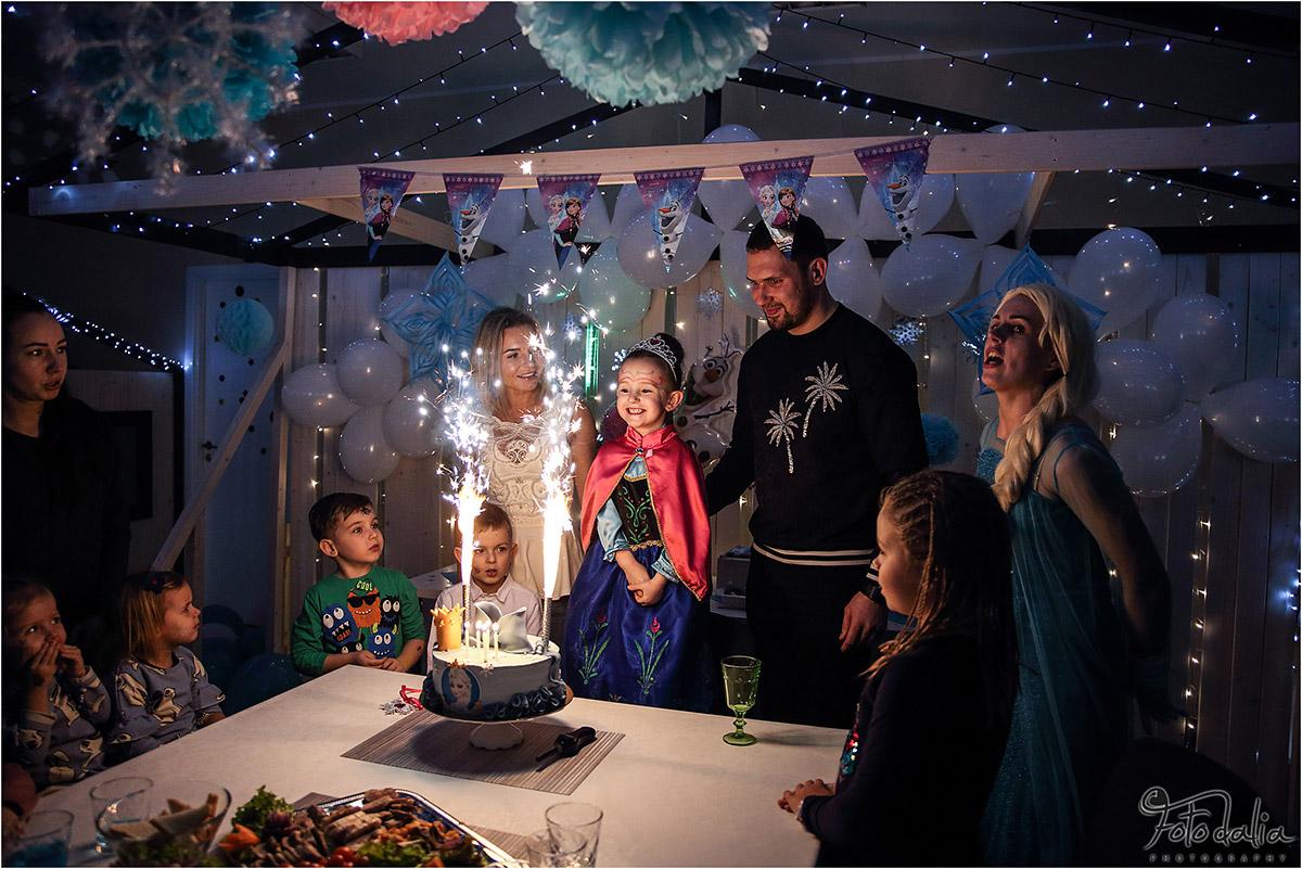 Danielės 5 gimtadienis Elzos tema. Aviuko namai