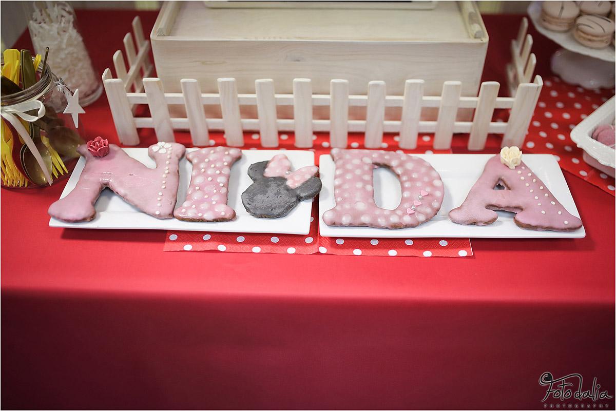 Nidos 5 gimtadienis pelytės Minės tema. Aviuko namai